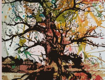 Ecoute le chant du Baobab