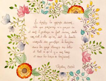 Les fleurs de Bobin
