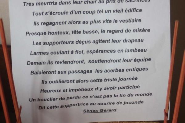 10 boucliers de brennus perdus - Gérard Sènes (73 votes)
