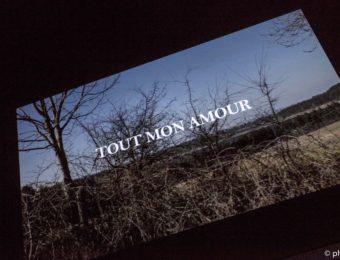"""Projection """"Tout mon amour"""""""