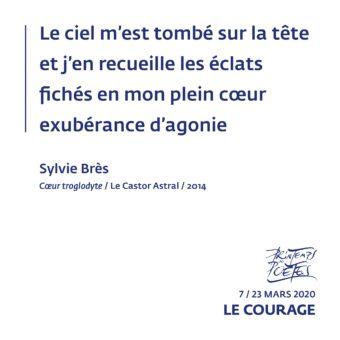 23 - Sylvie Brès