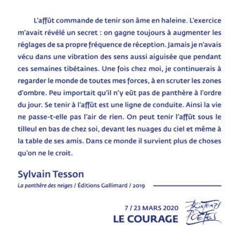 7 - Sylvain Tesson