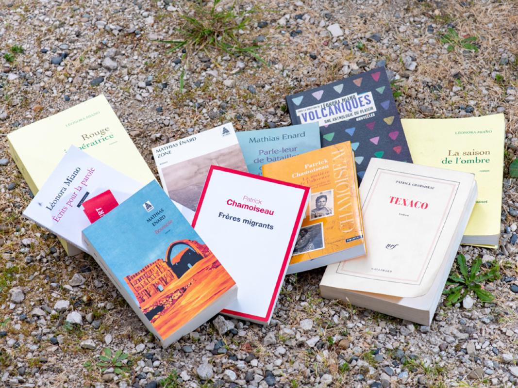 Photo des couvertures de livres des 3 invités d'honneur de la 30e édition du festival littéraire Lettres d'Automne à Montauban (82) - 2020- ©Philippe Colin